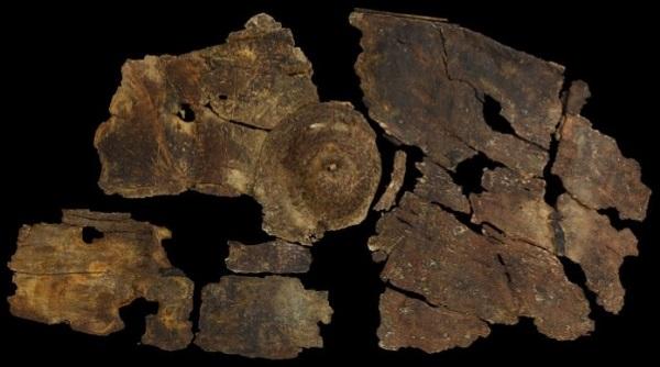 2,300-year-old-bark-shield.jpg