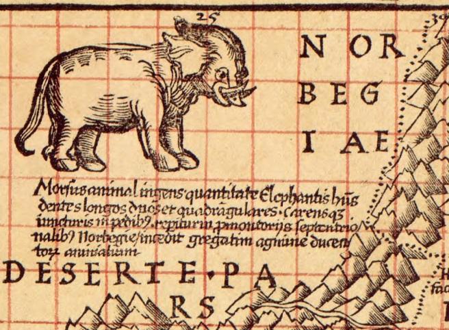 ancient_walrus.jpg