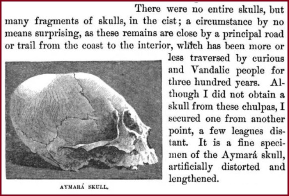 aymara-skull.jpg