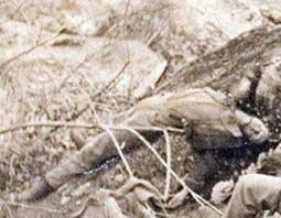 Civil_War_Catapult_casualties_1.jpg