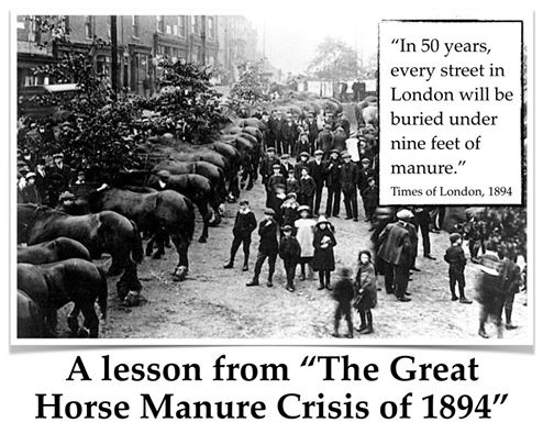 manure-crisis.jpg