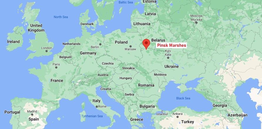 Pinsk Marshes.jpg