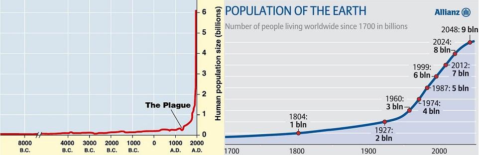 population_chart_1.jpg