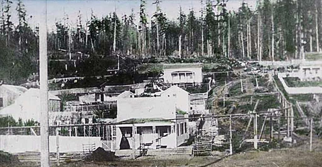 seattle-with-water-system-on-stilts-1870.jpg