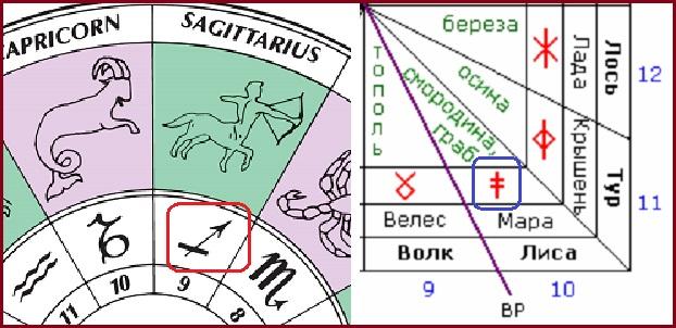 Signs-of-the-Zodiac-astrologyx.jpg