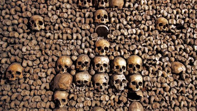 skulls_2.jpg