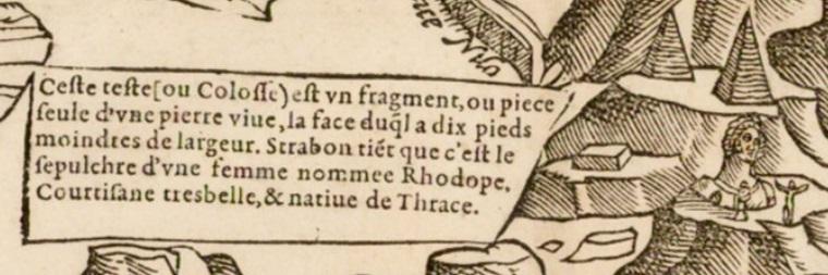 sphynx-1575-2.jpg