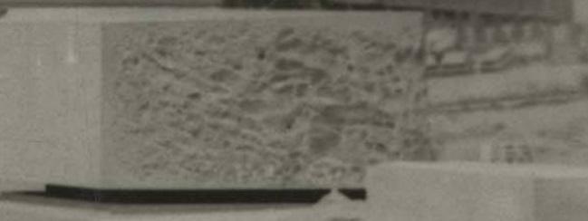 1957 france.jpg