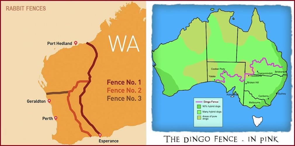 WA-Rabbit-Dingo-fence.jpg