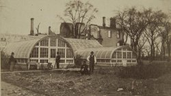 Chicago Fire of 1871: E.B.McCaggs Conservatory